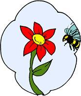 reproducció de les plantes